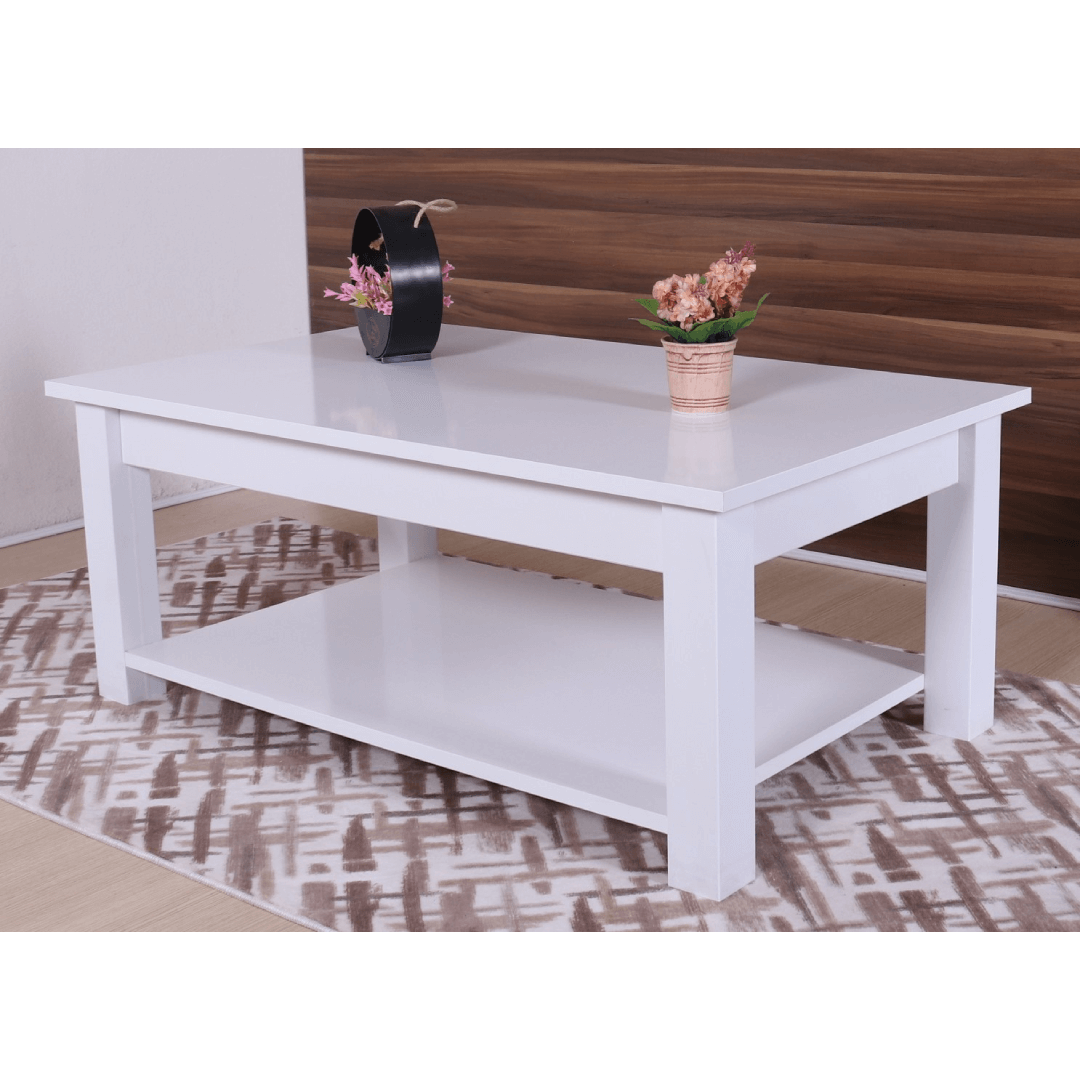 Coffee table with shelf guccamobilya